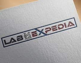 #53 cho LabExpedia Logo#1 bởi exshohag