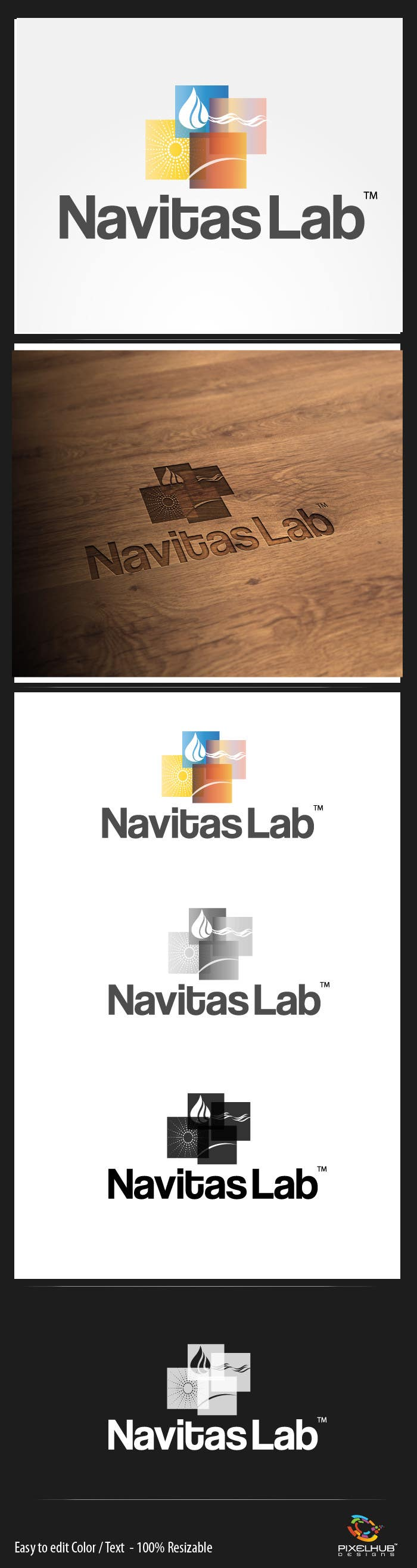 Konkurrenceindlæg #64 for Logo Design for Navitas Lab