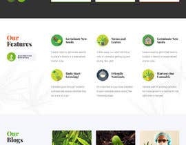 #10 para Need an attractive and simple website for Cannabis Products de MHSuvro