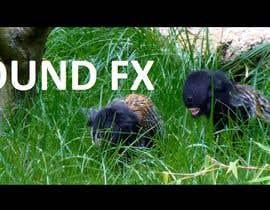 #9 for Add sound -------  SOUND FX  --------  Screeching aliens af Maxdean