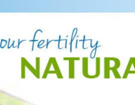 #11 para Banner Ad Design for Fertility Blog por ninasancel