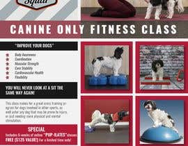 #252 untuk Flyer for my Canine Fitness Training Class oleh liponrahman