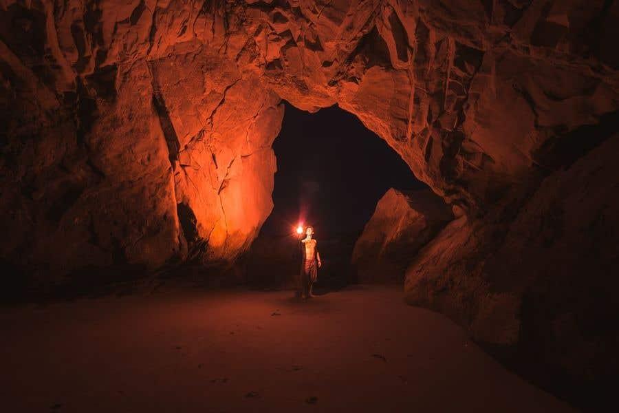 Kilpailutyö #                                        27                                      kilpailussa                                         The Brown Bear in the Ailwee Cave