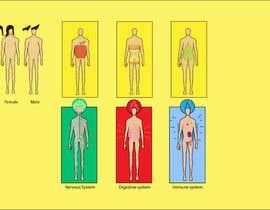 #46 for Create 6 Body Images by sadmanshakib9