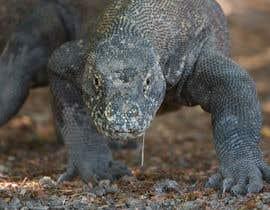 Nro 89 kilpailuun Create a Youtube thumbnail photo ----- for a youtube video (lizards) käyttäjältä armansarkar025
