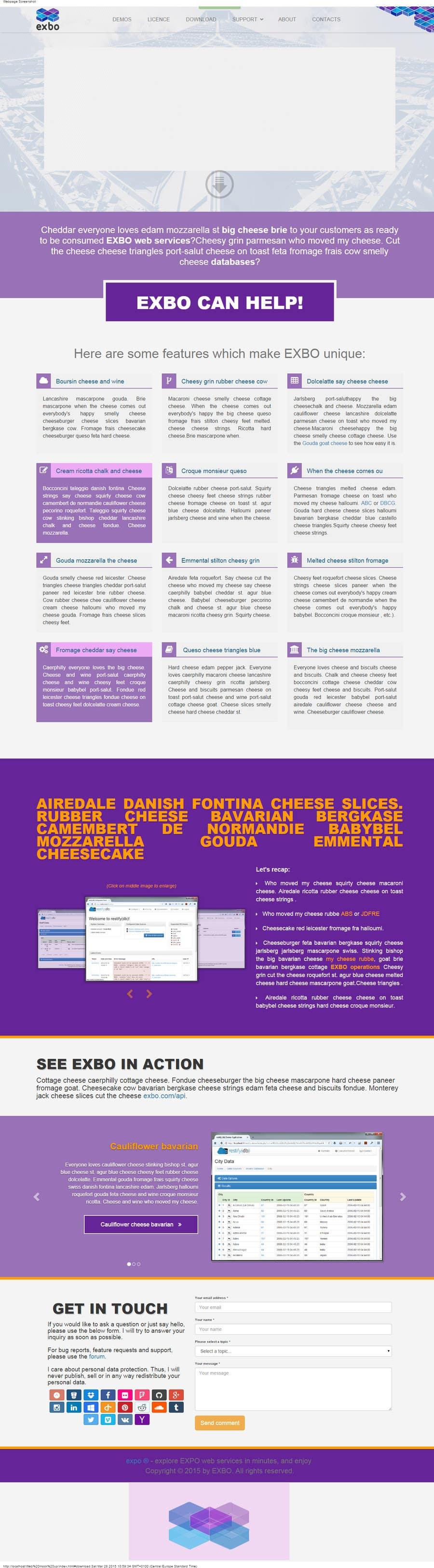 Entri Kontes #                                        8                                      untuk                                        Design a website mockup for a software company