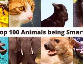 #75 for Create a Youtube thumbnail photo ----- for a youtube video (Top 100 Animals being smart) af Nuralamin12