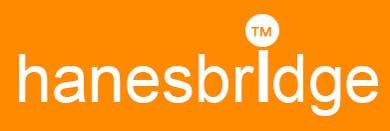 Konkurrenceindlæg #                                        28                                      for                                         Modify a Logo for hanesbridge