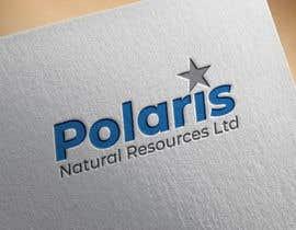 #133 for Polaris Logo Update by suraiyaahsan999