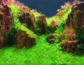 #268 for Aquarium: Background picture! by darkparadis13