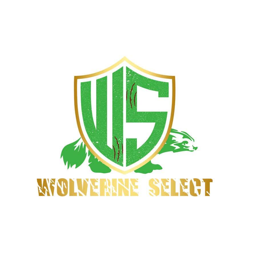 Konkurrenceindlæg #                                        34                                      for                                         Logo for Basketball team (Wolverine Select)
