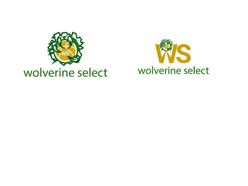 Konkurrenceindlæg #                                        25                                      for                                         Logo for Basketball team (Wolverine Select)