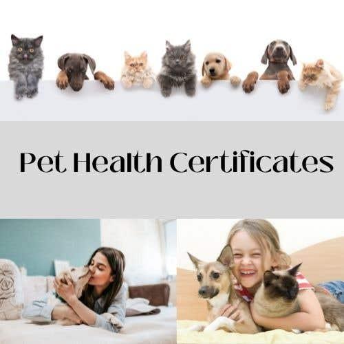 Kilpailutyö #                                        15                                      kilpailussa                                         Create a website mockup for a business that offers pet health certificates