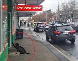 Nro 69 kilpailuun Photoshop Black Cat into an image. käyttäjältä paragon35