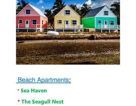 Nro 220 kilpailuun Name these Luxury Beach Apartments käyttäjältä Jakariya44