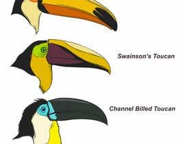 #43 untuk Sketches of Toucans oleh iwanbonano