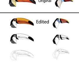#63 untuk Sketches of Toucans oleh ChonchonRema