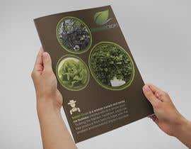 Nro 26 kilpailuun Design a Sales Brochure käyttäjältä jeanniefreelance