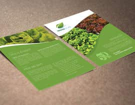 Nro 11 kilpailuun Design a Sales Brochure käyttäjältä raywind