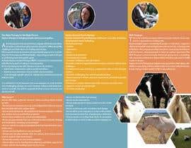#5 para Brochure for Horse therapy company por LascoDaniil
