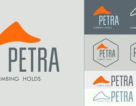 oshaparenko tarafından Logotipo para Petra için no 137