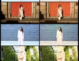 Nro 13 kilpailuun Colour Correct / Colour Grade My 25 Second Fashion Ad käyttäjältä adilansari11