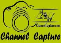 Graphic Design Entri Peraduan #4 for Design a Logo for ChannelCapture.com
