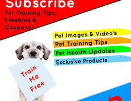#17 for Design a Banner for Subscription form by KhawarAbbaskhan