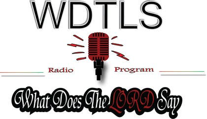 #85 untuk Design a Logo for Radio Show oleh naeemyousaf544