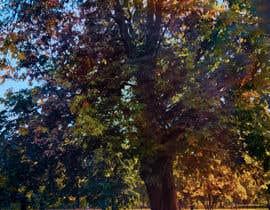 #23 untuk Big Tree Photo edit oleh sreedutt