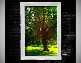 #85 untuk Big Tree Photo edit oleh sudipta007