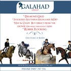 Graphic Design Inscrição do Concurso Nº17 para Graphic Design for Galahad Equine Group Pty Ltd