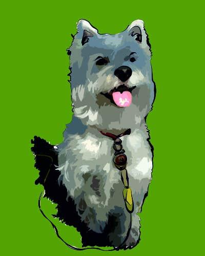 Inscrição nº 21 do Concurso para crreate a cartoon illustration of my dog for a childrens book