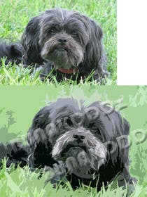 #5 for Affenpinscher dog converted to Pop Art by bunakiddz