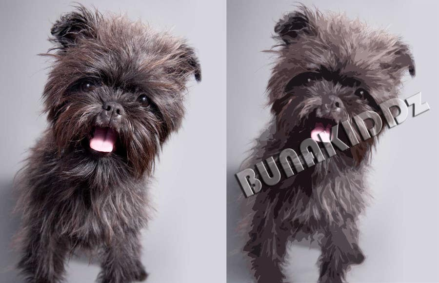 #8 for Affenpinscher dog converted to Pop Art by bunakiddz