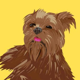 #6 for Affenpinscher dog converted to Pop Art by eduardobravo
