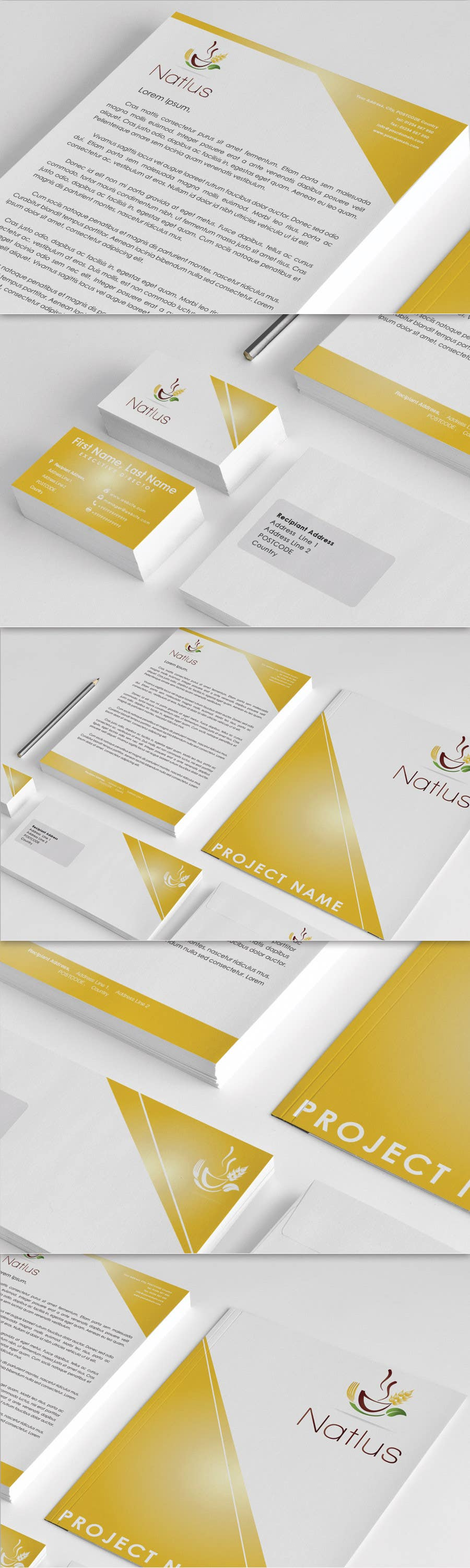 #77 for Design a logo & complete identity for NATLUS, by CTLav