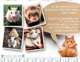 nº 35 pour Design a Flyer for a small animal rescue par RonRamores