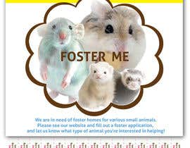 nº 40 pour Design a Flyer for a small animal rescue par paola0102