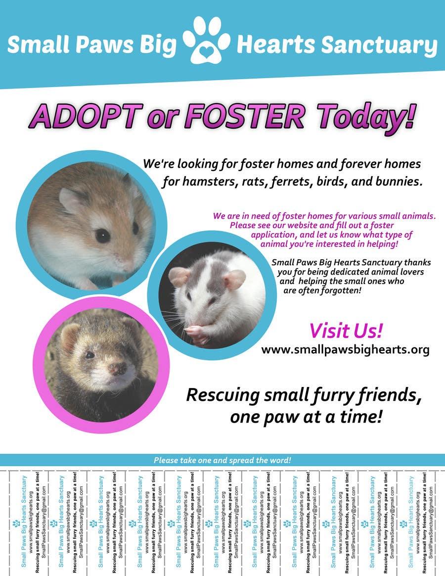 Bài tham dự cuộc thi #                                        46                                      cho                                         Design a Flyer for a small animal rescue