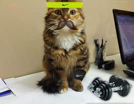 #29 for Freelancer.com #MOVEmber Challenge - Give Your Pet a Makeover (Photoshop Design Contest) by panosdimitrios