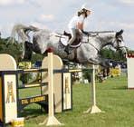 Bài tham dự #60 về Photoshop cho cuộc thi Horse jump photoshop