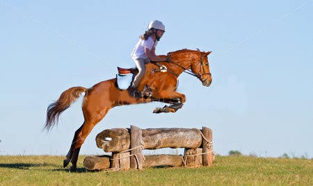 Bài tham dự cuộc thi #                                        5                                      cho                                         Horse jump photoshop