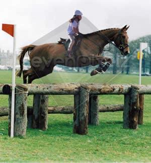 Bài tham dự cuộc thi #                                        17                                      cho                                         Horse jump photoshop