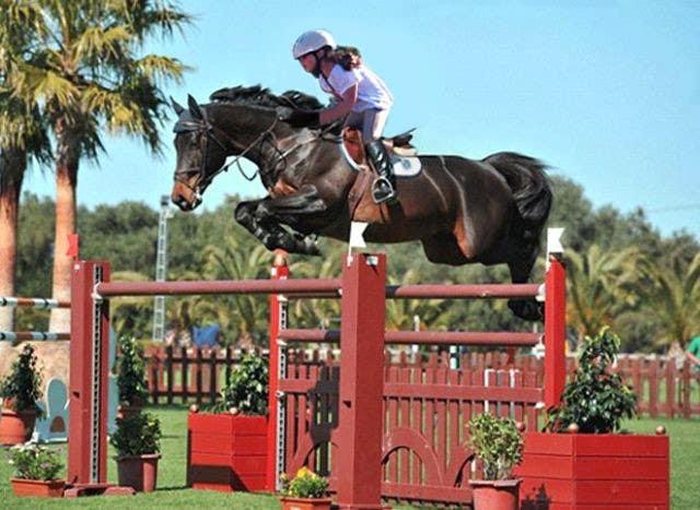 Bài tham dự cuộc thi #                                        46                                      cho                                         Horse jump photoshop