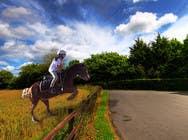 Bài tham dự #22 về Photoshop cho cuộc thi Horse jump photoshop