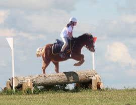 nº 7 pour Horse jump photoshop par paulogenargue