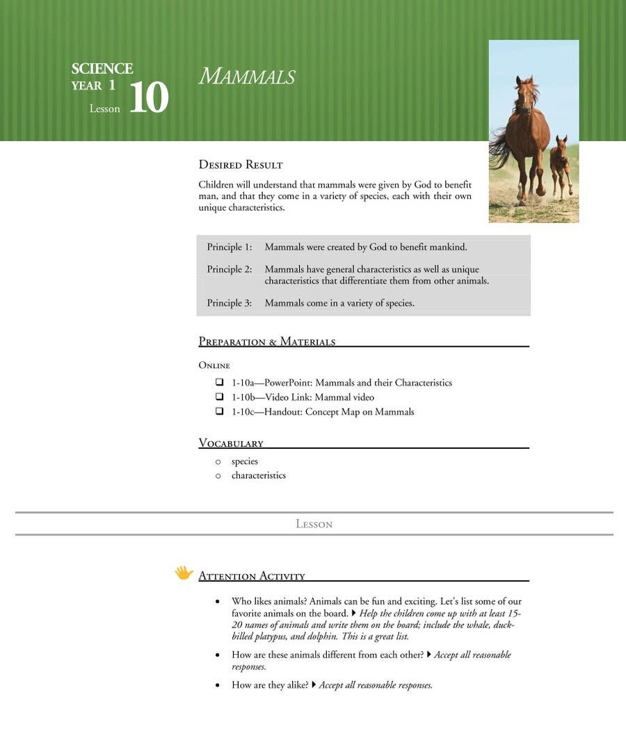 1 Man 1 Horse Video Link entry #6samriddhips for microsoft word document