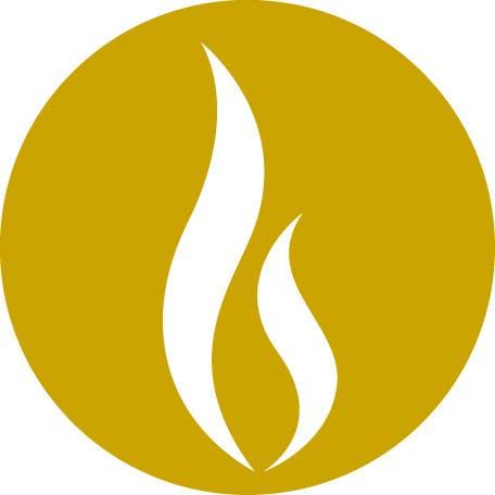 Inscrição nº 14 do Concurso para Design some Icons for Website
