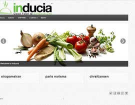 nº 4 pour Improve inducia.com template par xtianparis